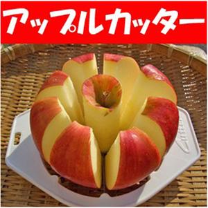 과일 커터기